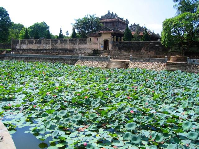 Hồ Ngọc Dịch mùa sen