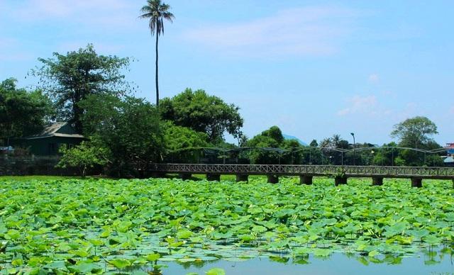 Hồ Tịnh Tâm (ảnh: Khám phá Huế)