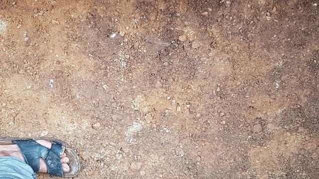Cận cảnh lớp đất có màu vàng và xen các đốm trắng