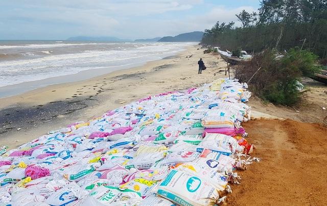 Một đoạn bờ biển qua thôn 4, xã Vinh Hải bị sạt lở nặng được đắp thêm đất và chồng bao cát cho nước biển khỏi tràn vào bên trong ruộng dân.