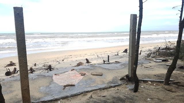 """Hàng trăm hecta đất ruộng đang dần bị biển """"nuốt chửng"""" - 2"""