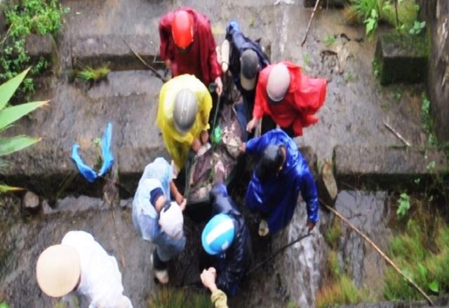 Lực lượng cứu hộ trực tiếp leo từ đèo xuống vực để cứu người