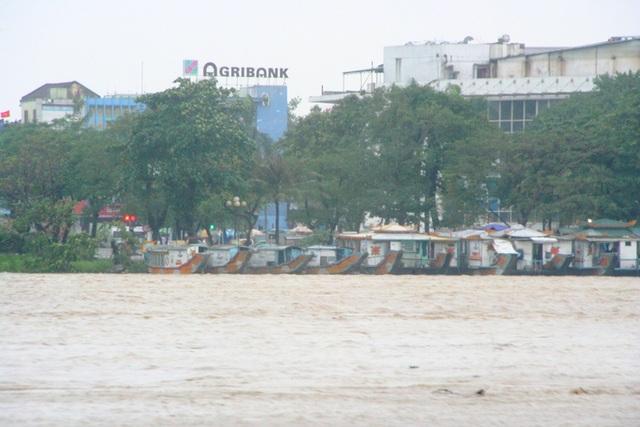 Các thuyền rồng ven sông Hương đã neo đậu cẩn thận chuẩn bị ứng phó khi lũ tiếp tục lên
