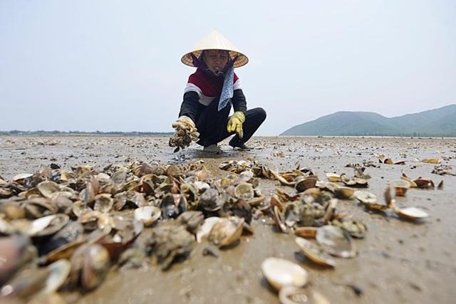 Mỗi năm, Việt Nam có thể thiệt hại 5% GDP vì ô nhiễm môi trường (ảnh minh họa).