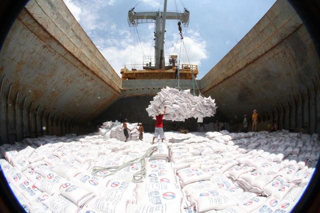 Gạo Việt giảm xuất khẩu giảm mạnh trong năm đầy biến động của ngành nông nghiệp (ảnh minh họa)
