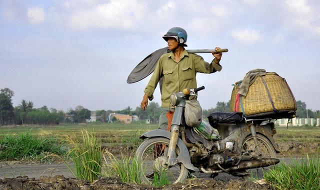 Những thợ săn cào cào thường phải chọn địa điểm rất kỹ trước khi hành nghề.