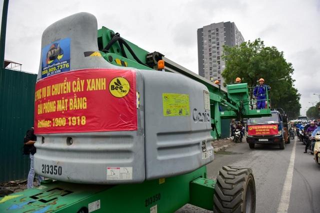 Xe chuyên dụng được huy động phục vụ việc xử lý cây xanh. Trong đợt đầu tiên, có 14 cây sẽ được xử lý để rút kinh nghiệm.