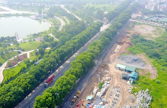 Hình ảnh hàng cây trên đường Phạm Văn Đồng trước khi bị chặt hạ, đánh chuyển.