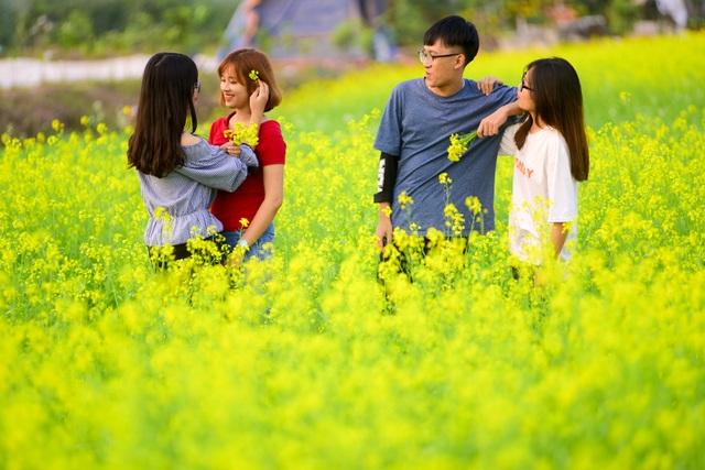 Các bạn trẻ đang tranh thủ tạo dáng trên cánh đồng hoa cải lãng mạn, hút tầm mắt. Những bông hoa được cài lên mái tóc làm duyên.