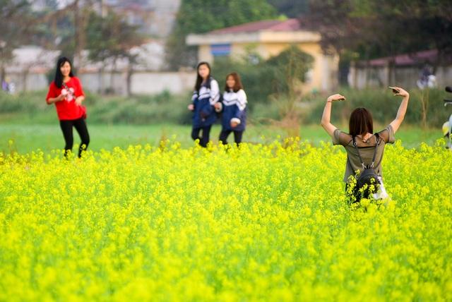 Trong ảnh, một bạn nữ đang tạo dáng hình trái tim giữa thảm hoa rực rỡ.