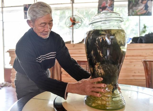 Ông Vết hiện lưu giữ hai bình rượu ngâm hai chú gà Đông Tảo mà theo ông, đây là những con gà hiếm có, đã gắn bó với ông suốt 5 năm.