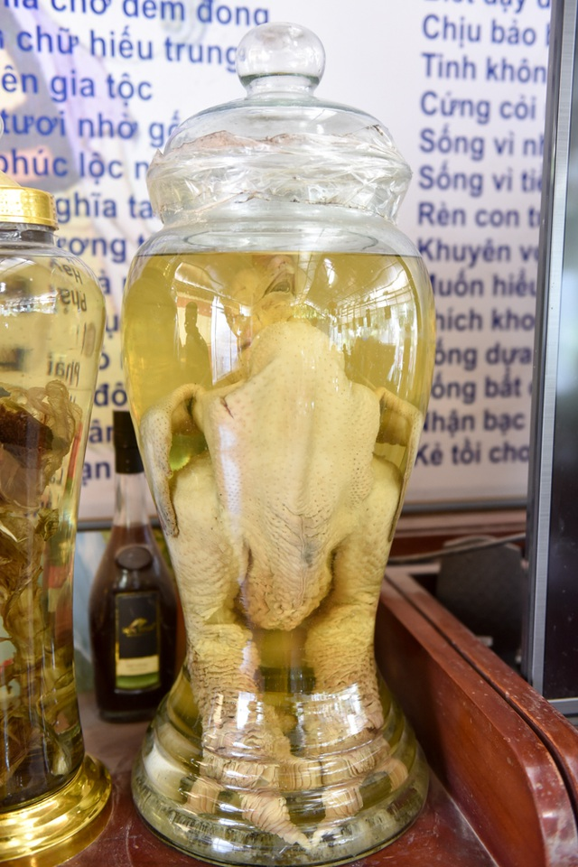 Để có thể ngâm gà trong rượu, ông Vết mất khá nhiều công, phải dùng tới cả dấm và chanh tươi để làm sạch gà trước khi cho vào bình rượu nặng 70 độ.