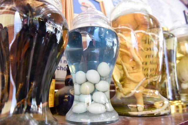 """Ngoài ngâm rượu hai con gà Đông Tảo, ông Vết còn ngâm trứng """"con so"""" của giống gà Tiến Vua này. Khi ngâm trứng một thời gian, nước rượu chuyển màu xanh ngọc bích rất đẹp mắt."""