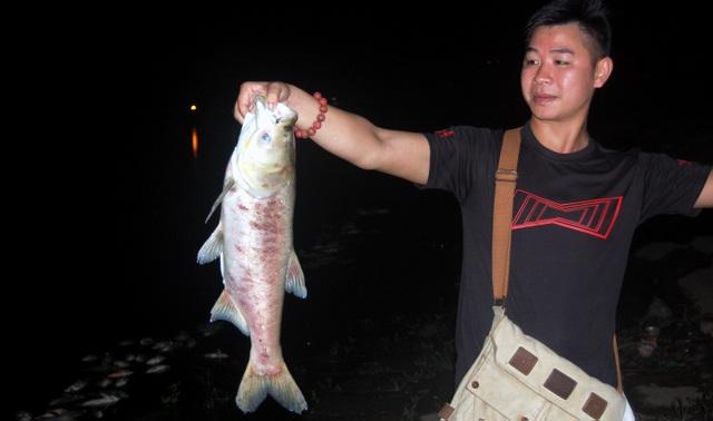 Anh Chiến với con cá nặng vài kg trôi dạt vào bờ.