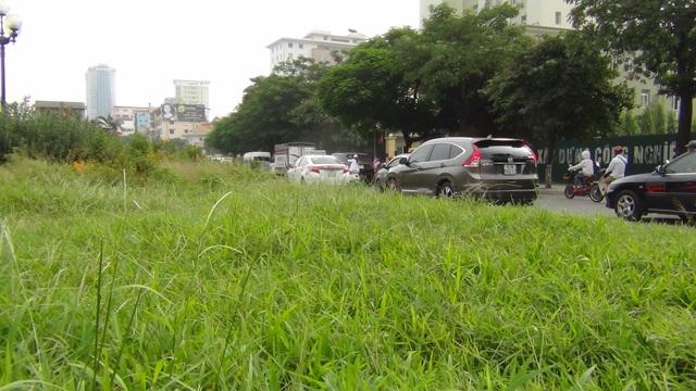 Chi phí cho việc cắt cỏ, tỉa hoa trước đây rất lớn. Việc tạm dừng cắt cỏ để tìm phương án phù hợp, giảm chi phí, khiến cỏ dại trên các tuyến phố mọc tốt um tùm.