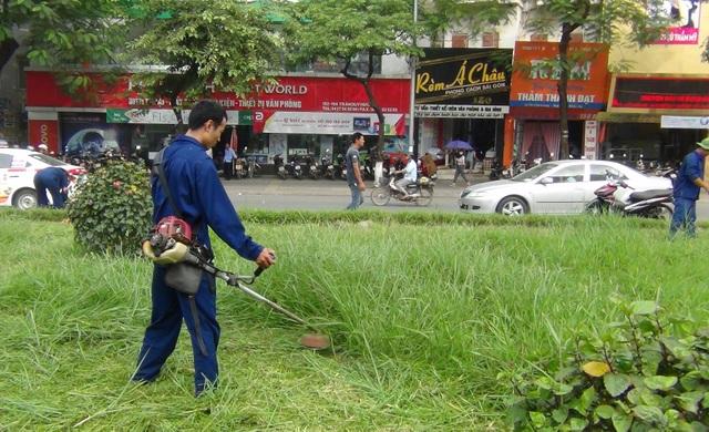 Sáng nay (ngày 10/10), hàng chục công nhân được huy động đến cắt cỏ trên đường Trần Duy Hưng