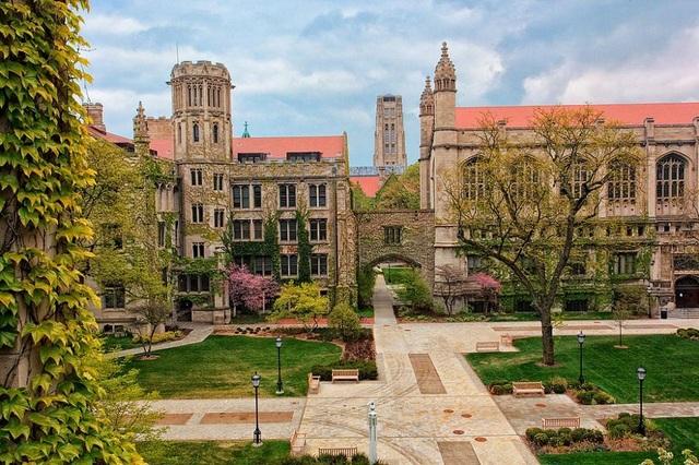 Khuôn viên trường Đại học Chicago (Mỹ).