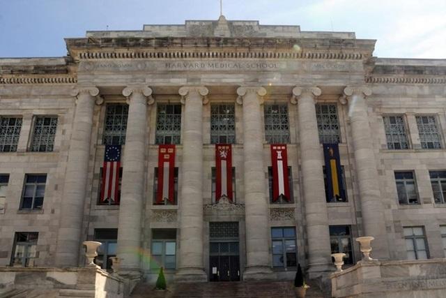 Đại học Y khoa Harvard danh tiếng đào tạo ngành Y thế nào