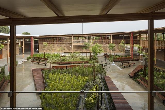 Ngôi trường tại Brazil được vinh danh là công trình kiến trúc xuất sắc nhất thế giới - 5