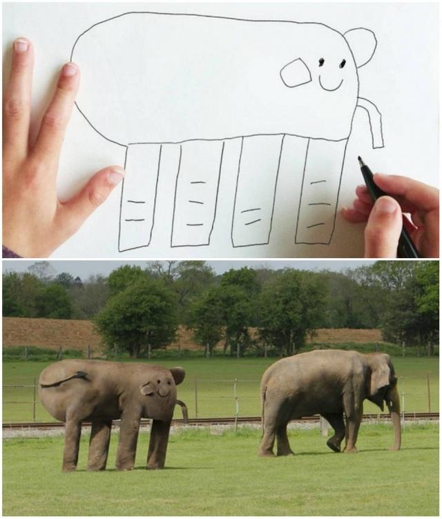 Một chú voi cùng bạn của mình