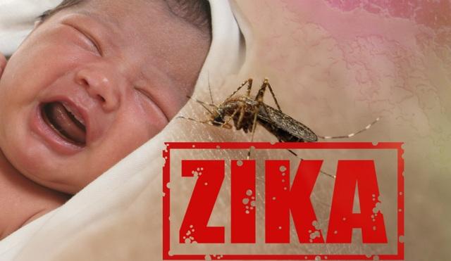 Phổ cập cách phòng ngừa Zika hiệu quả, an toàn - 1