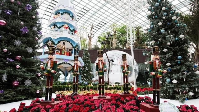 Buổi chiều: Dạo bước giữa vườn hoa Merry Medley tại Flower Dome, lắng nghe những khúc hòa tấu du dương trong không gian rực rỡ sắc đỏ trắng cùng mùi gỗ đàn hương thoang thoảng.