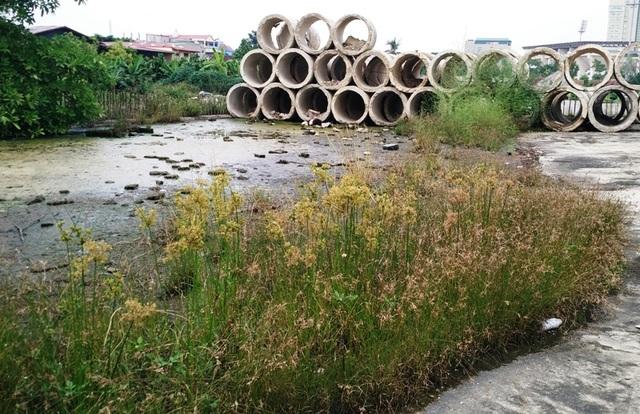 Dự án xây dựng trụ sở Trung tâm TDTT và Bể bơi tỉnh Ninh Bình bỏ hoang hơn 10 năm qua do thiếu vốn.