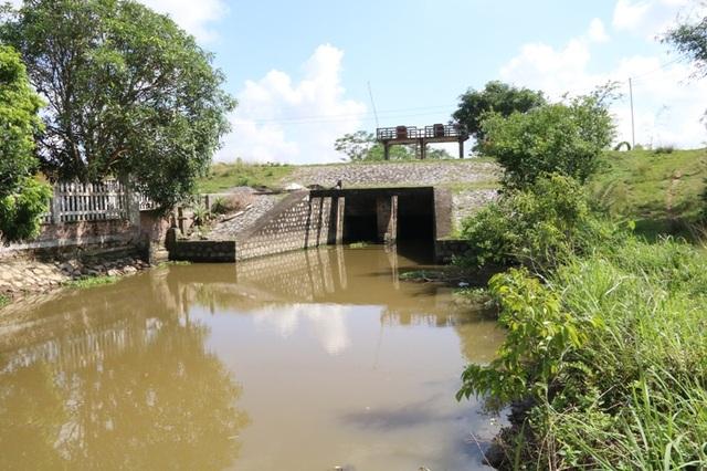 Sông Trục là con sông quan trọng dẫn nước tưới, tiêu nước cho các xã vùng nam Ninh Bình, do bị nhiễm mặn nhiều năm qua khiến cuộc sống sinh hoạt, sản xuất của hơn 2.000 hộ dân trong vùng bị đảo lộn.