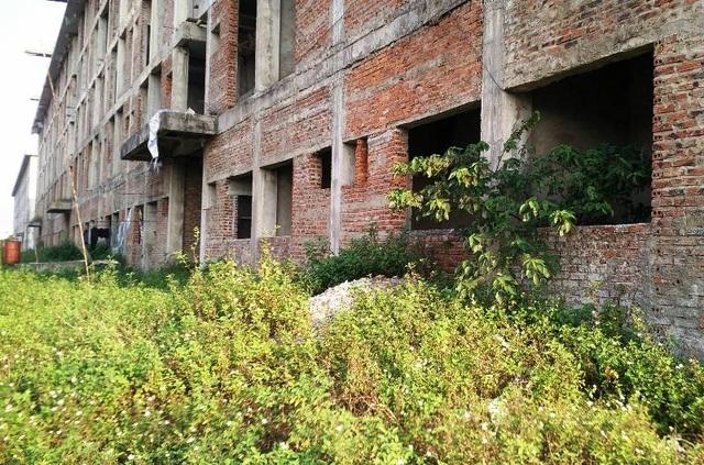 Xung quanh tòa nhà, cỏ dại mọc khắp nơi, biến công trình tiền tỷ này thành những ngôi nhà hoang