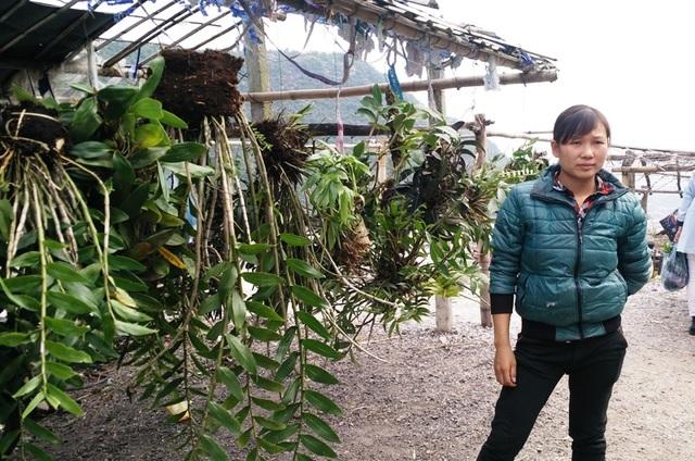 Chợ phong lan nằm ngay trên Dốc Trắng, đoạn giáp danh giữa huyện Tân Lạc và Mai Châu tỉnh Hòa Bình.