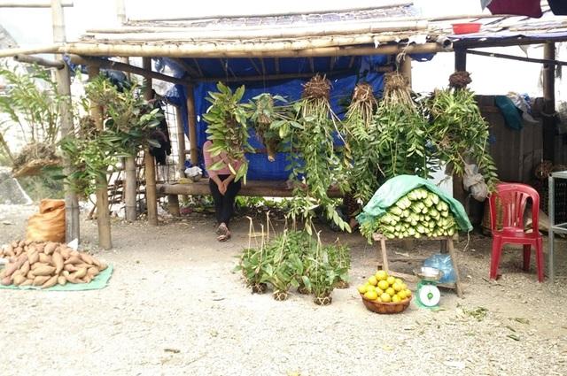Hoa lan được bày bán cùng những sản vật cây nhà lá vườn của người dân.