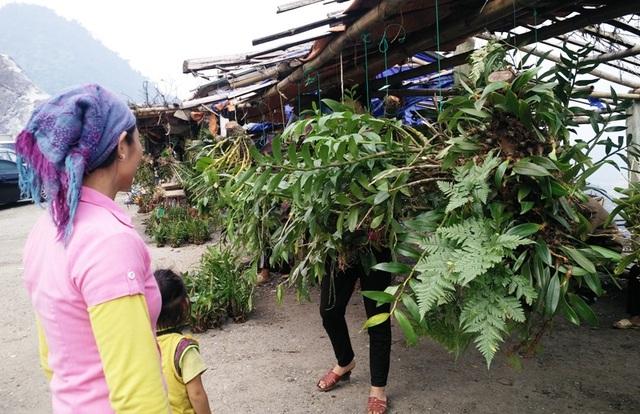 Chợ ngoài bày bán sản vật núi rừng còn bán nhiều các loại hoa phong lan rừng nên lúc nào cũng thu hút đông khách du lịch đến tham quan và mua bán.