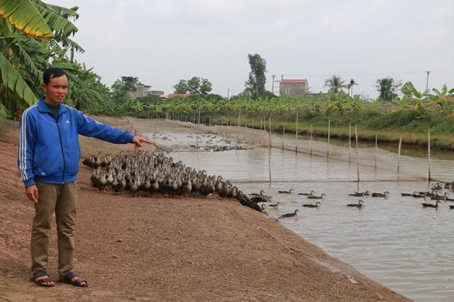 Trang trại rộng 6 ha nuôi hàng vạn con vịt của anh Nhật, mỗi năm cho thu nhập trên 500 triệu đồng.