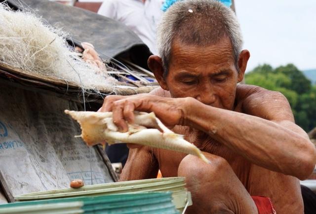 Người dân đau xót nhìn hàng chục tấn cá chết mà không biết làm cách nào cứu vãn
