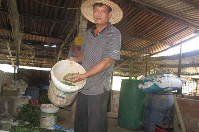 Ông Thái giới thiệu loại thức ăn cho vịt