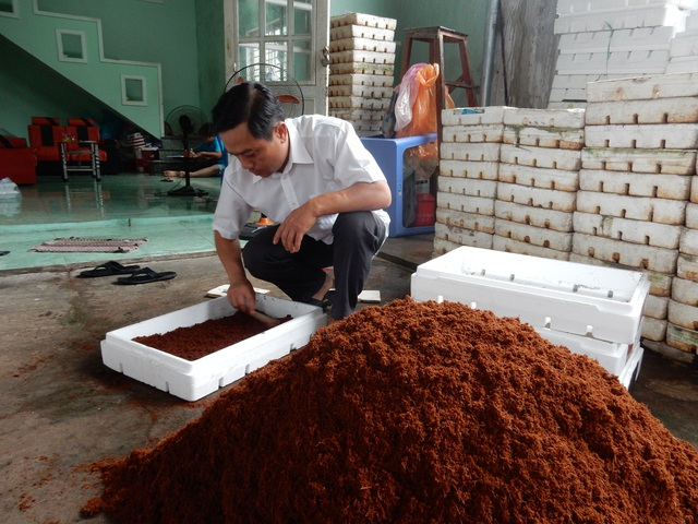 Rau mầm được trồng bằng xơ dừa và phân vi sinh