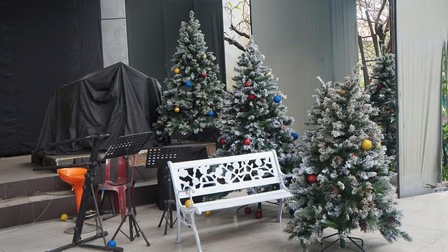 Những cây thông này là đạo cụ của show cuối cùng vào ngày 17/12/2016 vừa qua với chủ đề về Noel