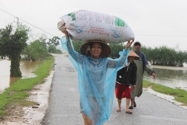 Vừa thu dọn đồ về nhà chưa được bao lâu, bà Trần Thị Liên (xóm 4, xã Hà Linh) lại tất tả đưa đồ đạc đi gửi tại những chỗ cao ráo