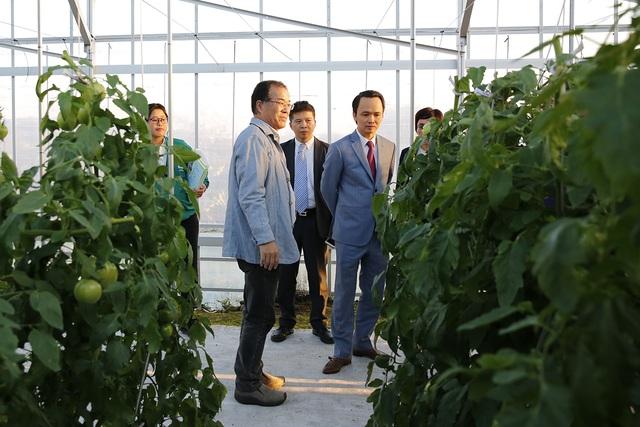 Tập đoàn có chuyến tham quan Trang trại nông nghiệp ứng dụng công nghệ cao Farmdo