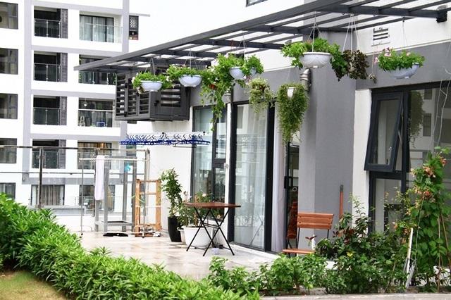 Vườn treo tầng 8 tô điểm cho ban công xanh mướt và trong lành