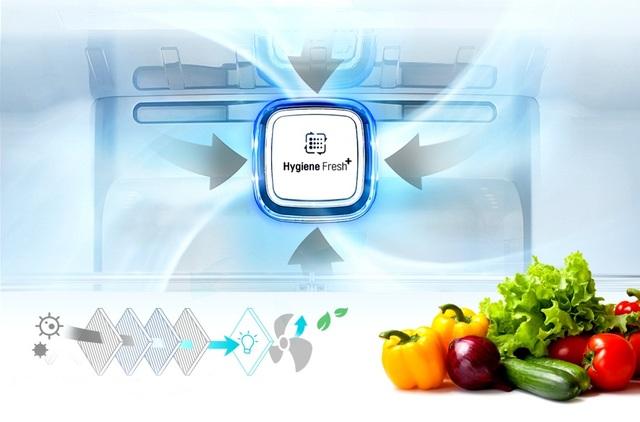 Công nghệ lọc hiện đại trong tủ lạnh LG Linear Inverter xóa tan nỗi lo về các mầm mống gây hại cho sức khỏe của cả gia đình