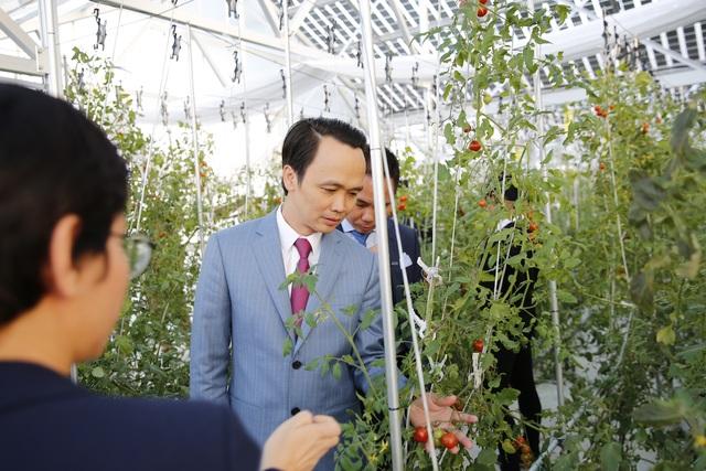 Ông Trịnh Văn Quyết, Chủ tịch FLC thăm trang trại nông nghiệp của Farmdo tại Nhật bản.