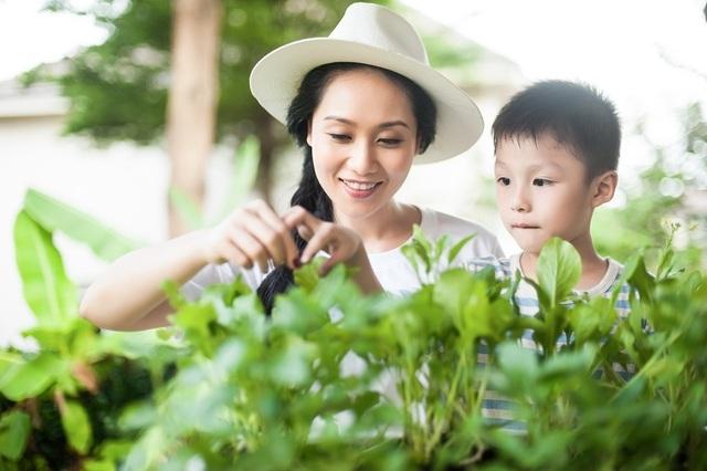 Ban công vừa là nơi đón nắng gió vừa là vườn của mẹ cung cấp rau sạch cho bữa cơm gia đình
