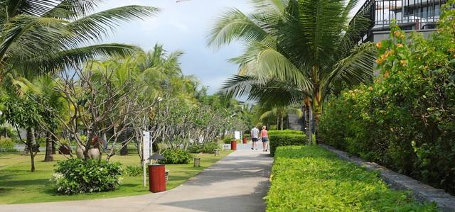 Cảnh quan cây xanh đẹp mắt cũng là một lợi thế của Novotel Villas