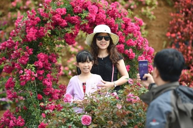"""Không còn cảnh xùm xụp áo chống nắng, thời trang ở đây là """"bung lụa"""" để khoe sắc với thế giới hoa hồng đủ loại rực rỡ, trên lối vào Sun World Fansipan Legend."""