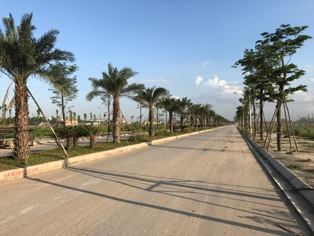 Hệ thống cây xanh, chiếu sáng và tuyến đường nội đô thị đã cơ bản hoàn thành
