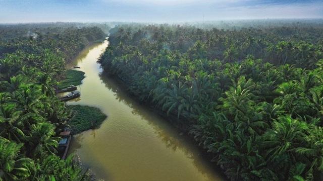 """Betrimex và kế hoạch kiến tạo """"10.000 ha vườn dừa organic cho nông dân"""""""