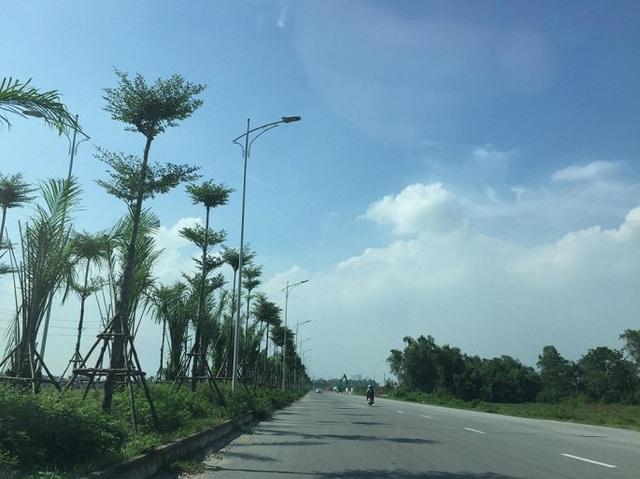 Hiện dọc tuyến đường gần 20 km này, cây xanh đã được trồng xanh mướt.