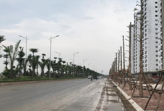Dự án đường trục phía Nam Hà Tây cũ là dự án BT (đổi đất lấy hạ tầng) có chiều dài 41,5 km, mặt cắt ngang 40 m, gồm 4 làn xe, tốc độ thiết kế 60 km/h.