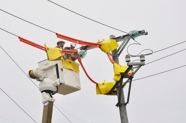 EVN HANOI chủ động tiến hành duy tu bảo dưỡng và sửa chữa kịp thời thiết bị điện trước mùa mưa bão.